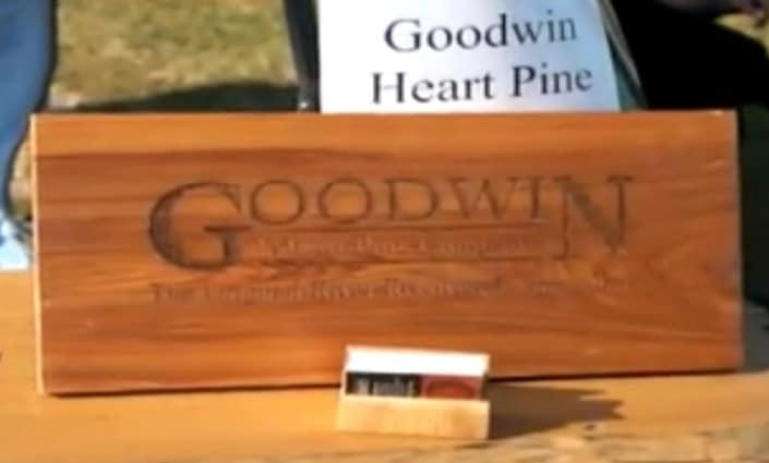 Goodwin Organizes Green Halloween in Gainesville Fl