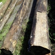 Sourcing River Logs – My Story (part 1) 1