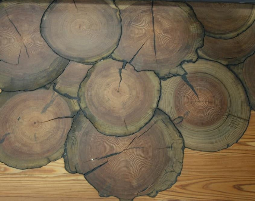 A Breathtaking Display of Goodwin's Various Wood Species 8
