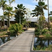 Congratulations to Tenna Florian of Lake   Flato Architects 15