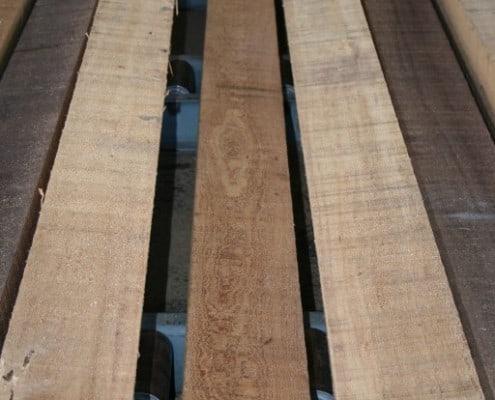 Take a Look at this Beautiful Heart Cypress 8