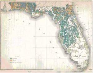 floridaforestmap