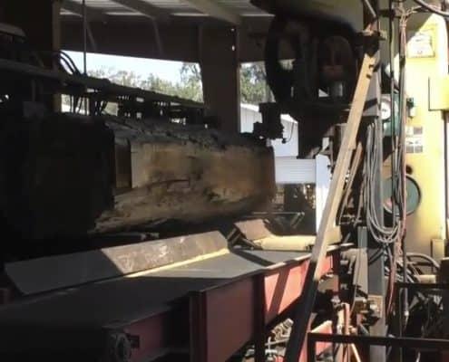 Sawing Sinker Cypress