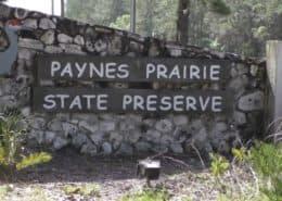 Preserving a Prairie