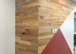 River-Recovered Heart Cypress Feature Walls and Reading Nooks Tell a Story of Sustainably at One Florida School