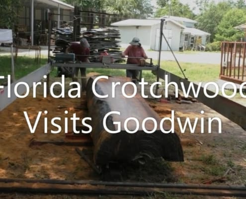 Visit from Florida Crotchwood!